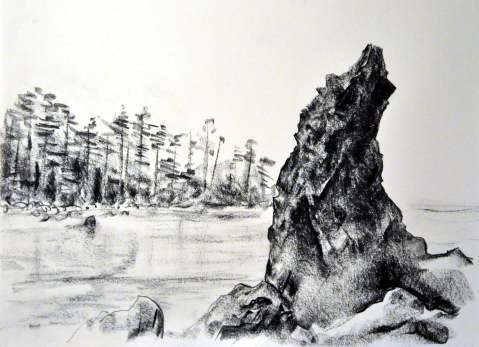 Ruby Beach wep3