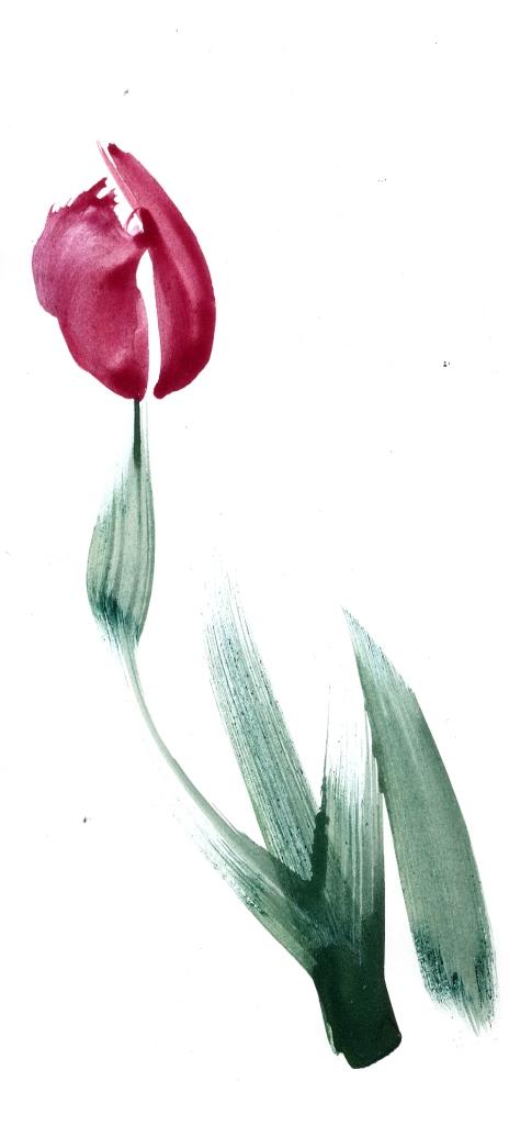 Pflanze osiuow