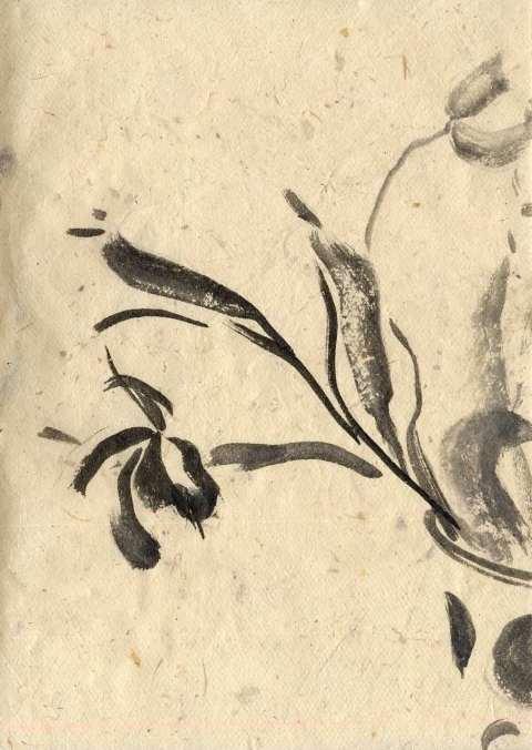 Tulpen slkjw