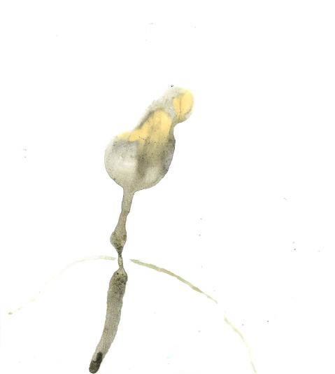 Klecksoszene oifdu