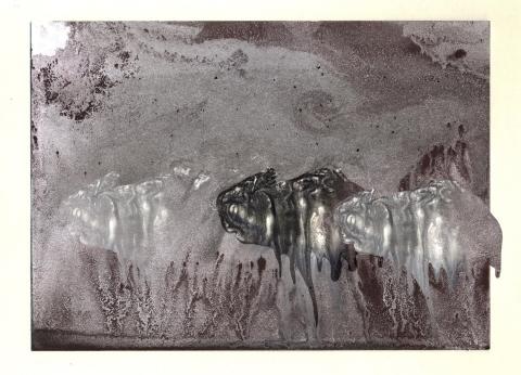 Trilobitenträumer