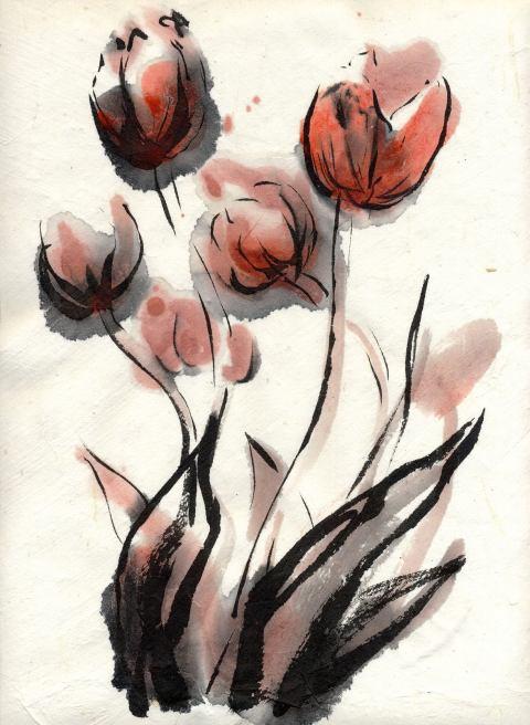 tulpen-fkjhr