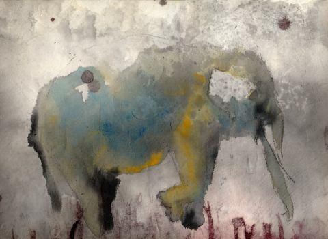 elefant-abhebend