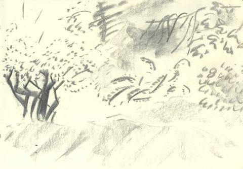 Vogelsberg ymfk