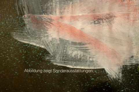 BMW_Übermalung_Detail